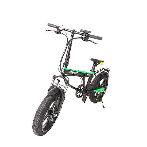 Bfisport EB20 36V250W Brushless Motor 30KM Endurance Eletric Bike With 3.0  Snow Tires