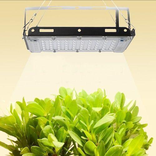800W Full Spectral Lamp Plant Grow Light